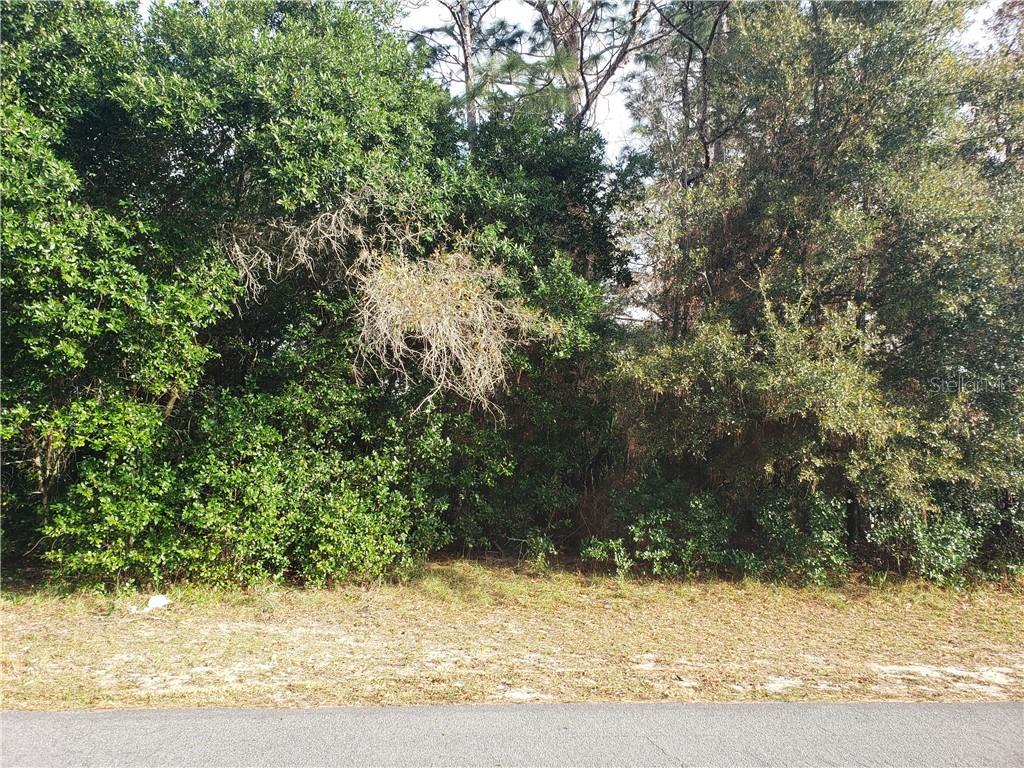 4896 KEYSVILLE AVENUE, SPRING HILL, Florida 34608, ,Lots And Land,For Sale,4896 KEYSVILLE AVENUE,W7829524