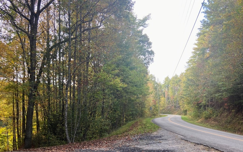 Ellijay, Georgia 30540, ,Lots And Land,For Sale,302317