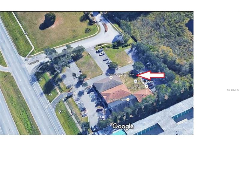 23920 STATE ROAD 54, LUTZ, Florida 33559, ,Lots And Land,For Sale,23920 STATE ROAD 54,T2834335