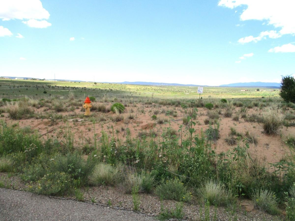 20 Brayden Court, Edgewood, New Mexico 87015, ,Lots And Land,For Sale,20 Brayden Court,983625