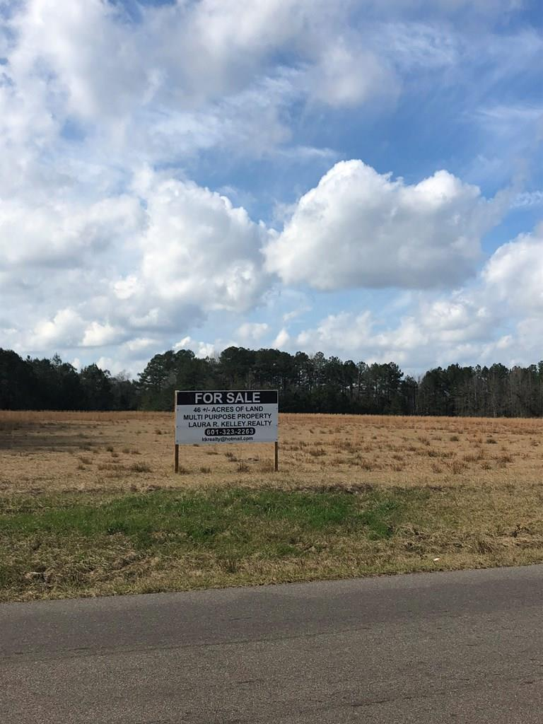 000 Hwy 184 West & MLK Drive, Waynesboro, Mississippi 39367, ,Lots And Land,For Sale,000 Hwy 184 West & MLK Drive,26949