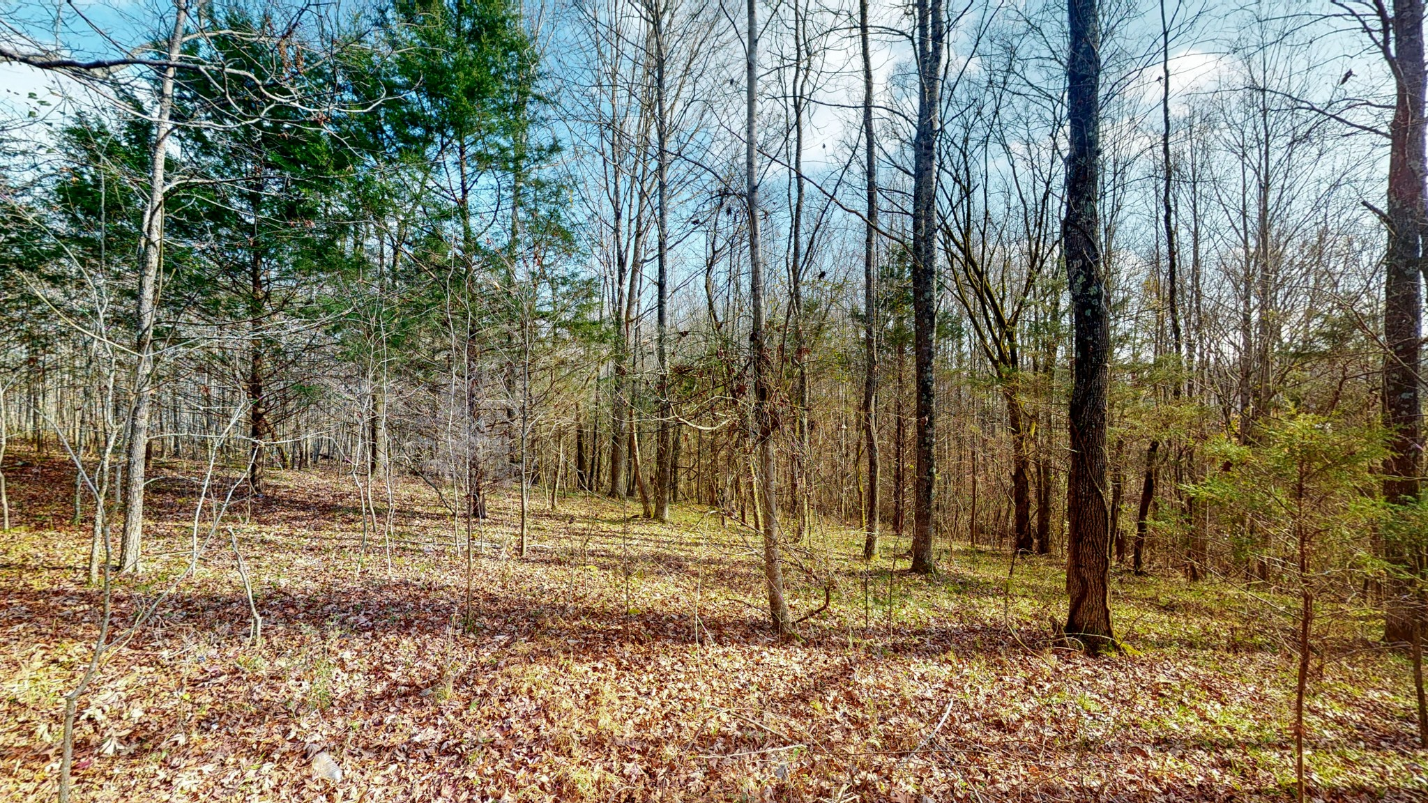 0 Maxwell Rd., Pulaski, Tennessee 38478, ,Lots And Land,For Sale,0 Maxwell Rd.,2202002