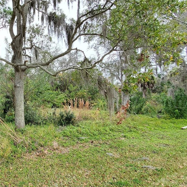 N HIGHLAND AVENUE, TARPON SPRINGS, Florida 34688, ,Lots And Land,For Sale,N HIGHLAND AVENUE,U8111047