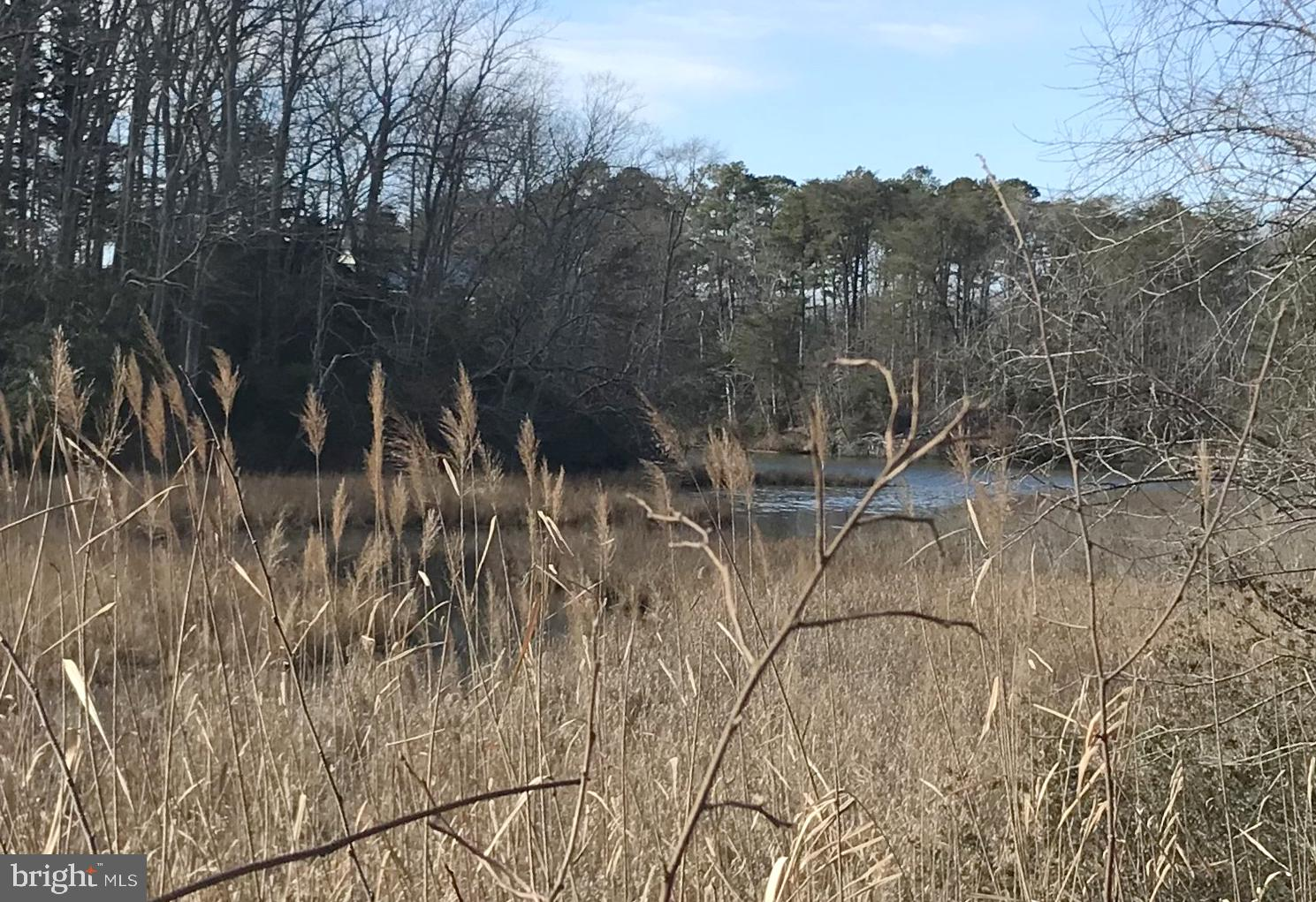 7820 GRAPE COURT, LUSBY, Maryland 20657, ,Lots And Land,For Sale,7820 GRAPE COURT,MDCA180688
