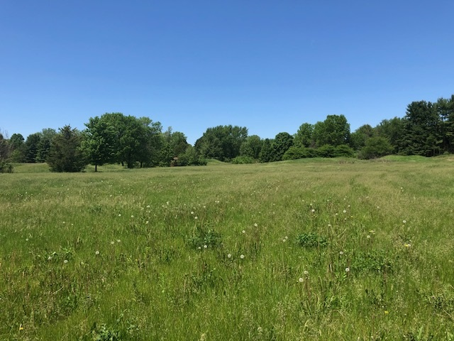 L83 Colonial Way, Verona, Wisconsin 53593, ,Lots And Land,For Sale,L83 Colonial Way,1901442