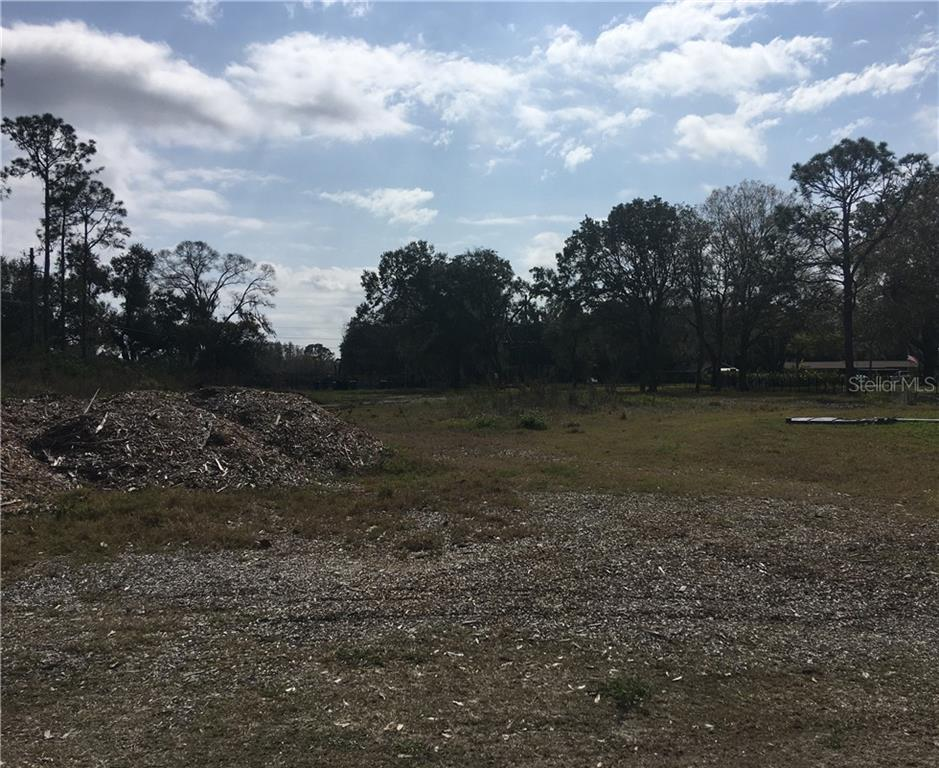 16113 CARENCIA LANE, ODESSA, Florida 33556, ,Lots And Land,For Sale,16113 CARENCIA LANE,T3288738