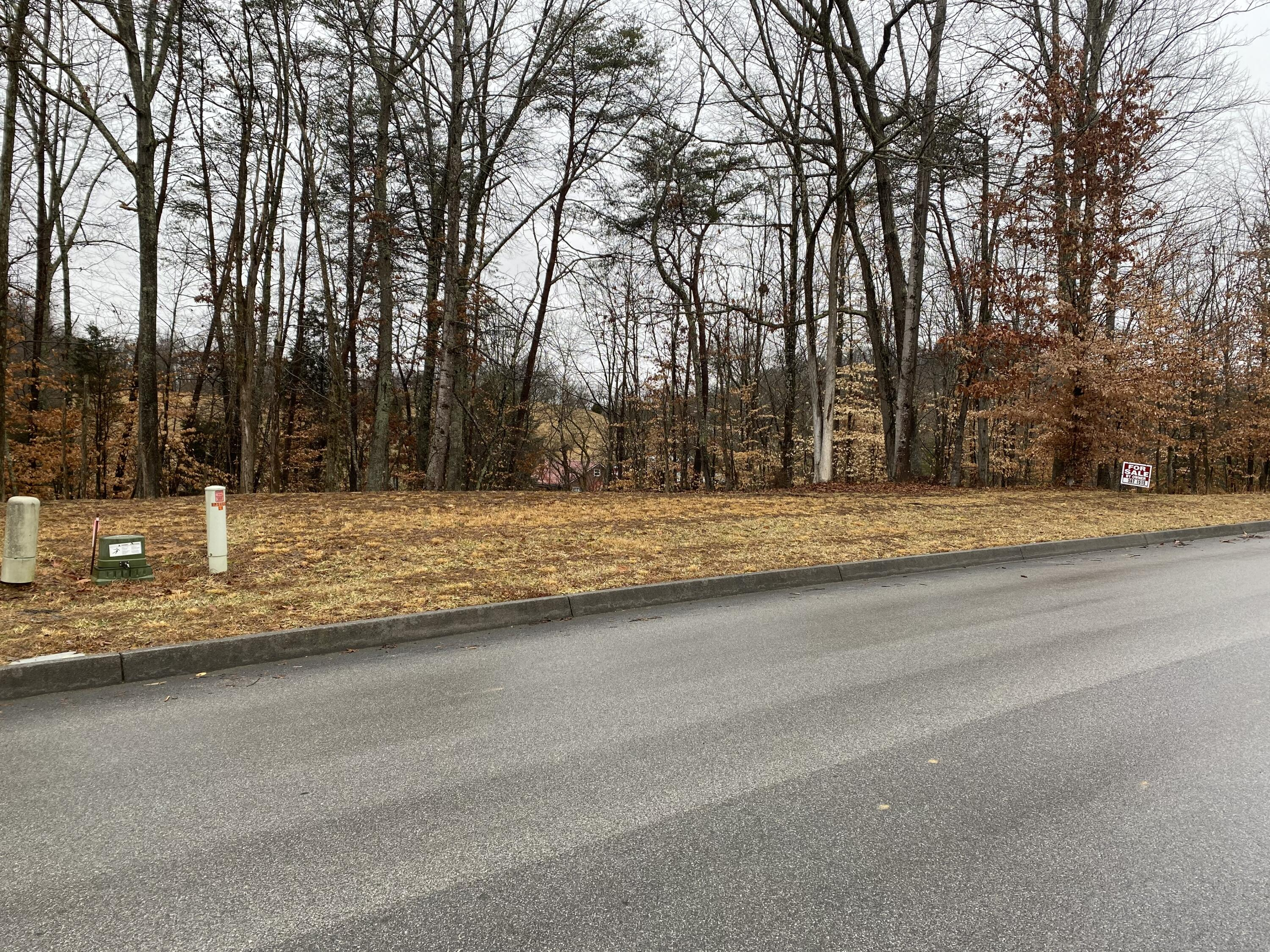 2011 Scenic Pointe Place, Church Hill, Tennessee 37642, ,Lots And Land,For Sale,2011 Scenic Pointe Place,9918260