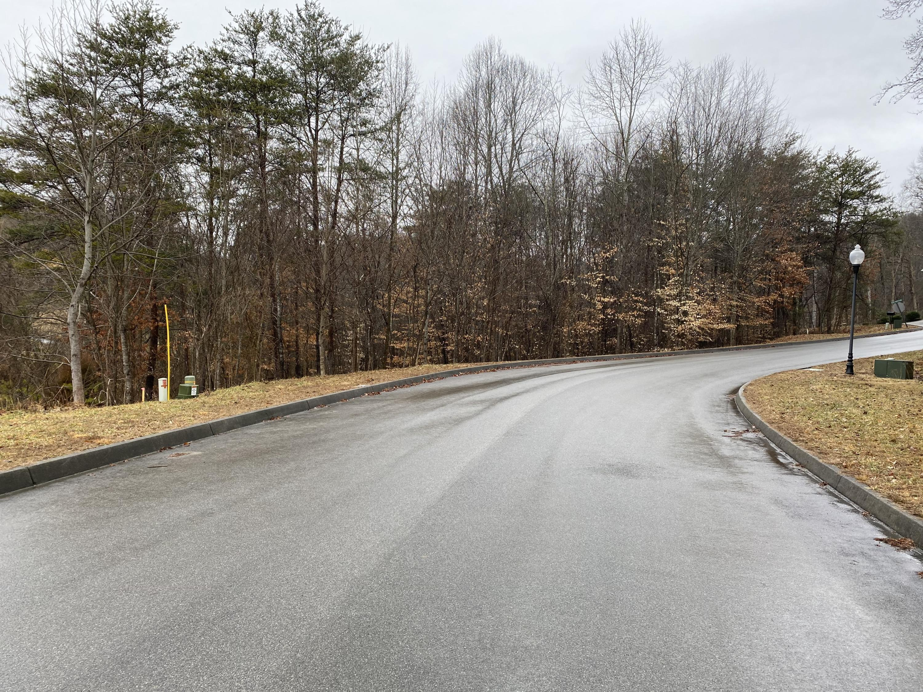 2029 Scenic Pointe Place, Church Hill, Tennessee 37642, ,Lots And Land,For Sale,2029 Scenic Pointe Place,9918277