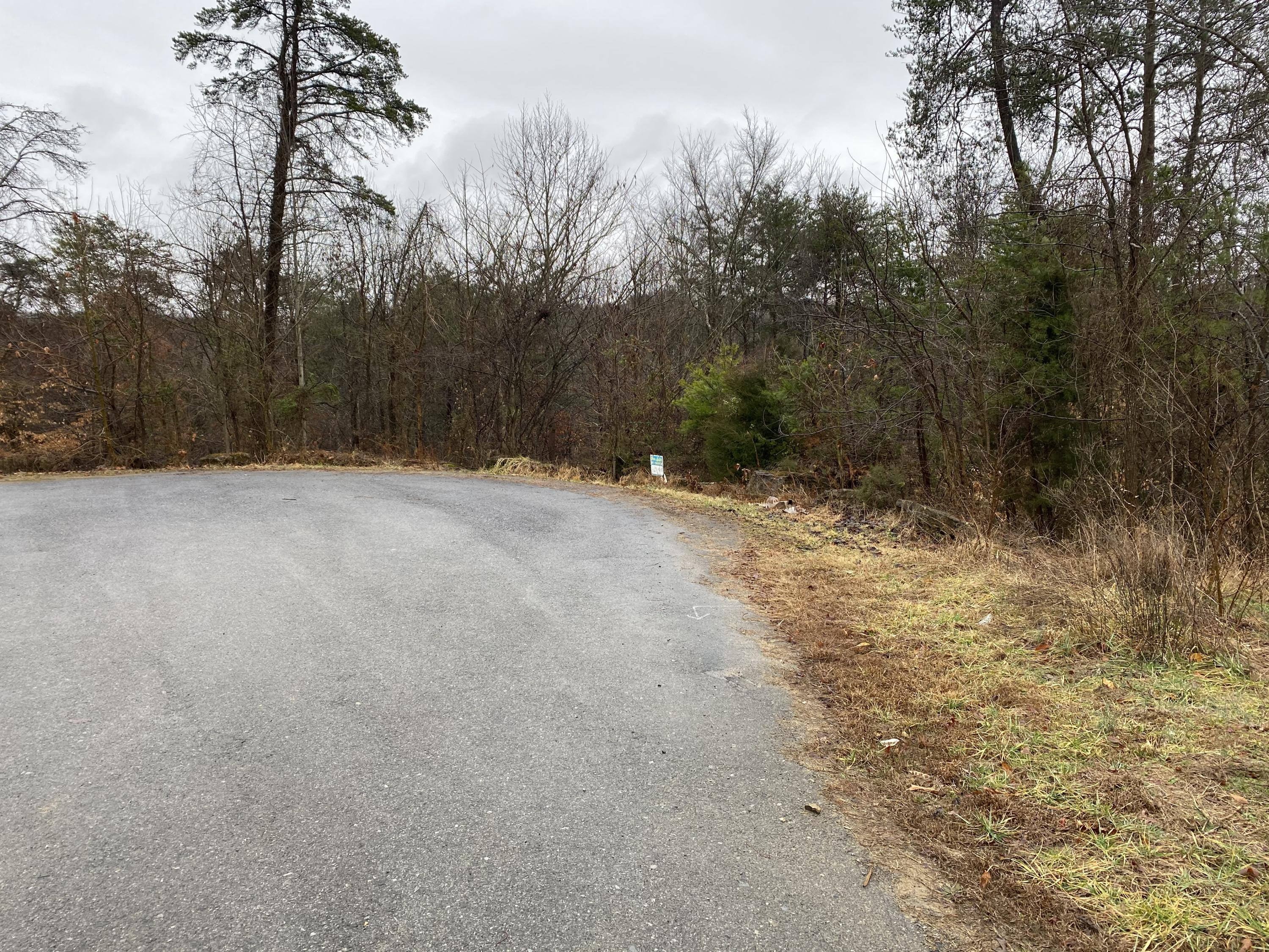 2064 Scenic Pointe Place, Church Hill, Tennessee 37642, ,Lots And Land,For Sale,2064 Scenic Pointe Place,9918297