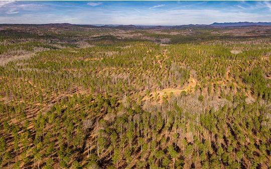 OAK HILL RD, Ellijay, Georgia 30540, ,Lots And Land,For Sale,OAK HILL RD,304557