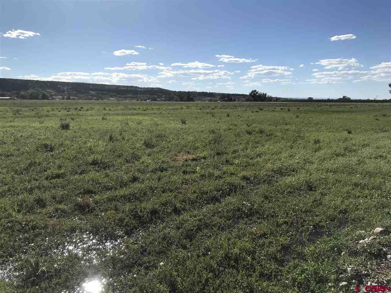 TBD (Lot 1) Trout Road, Montrose, Colorado 81403, ,Lots And Land,For Sale,TBD (Lot 1) Trout Road,779114