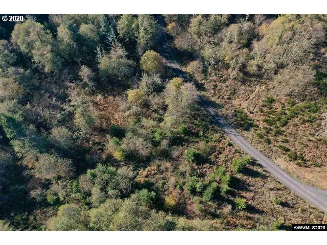 423 PHELPS MOUNTAIN LN SE, Silverton, Oregon 97381, ,Lots And Land,For Sale,423 PHELPS MOUNTAIN LN SE,20044114