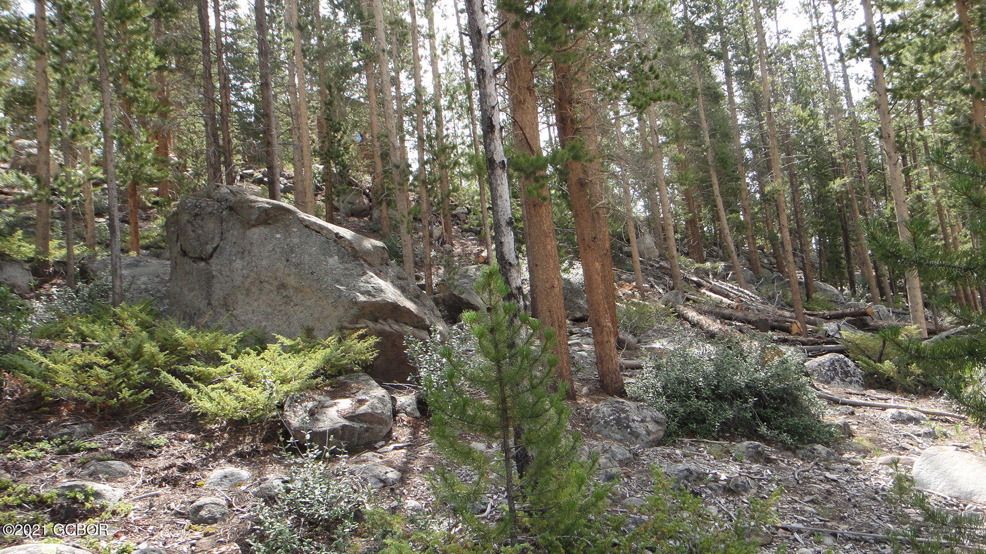 54 GCR 4631, Grand Lake, Colorado 80447, ,Lots And Land,For Sale,54 GCR 4631,21-386