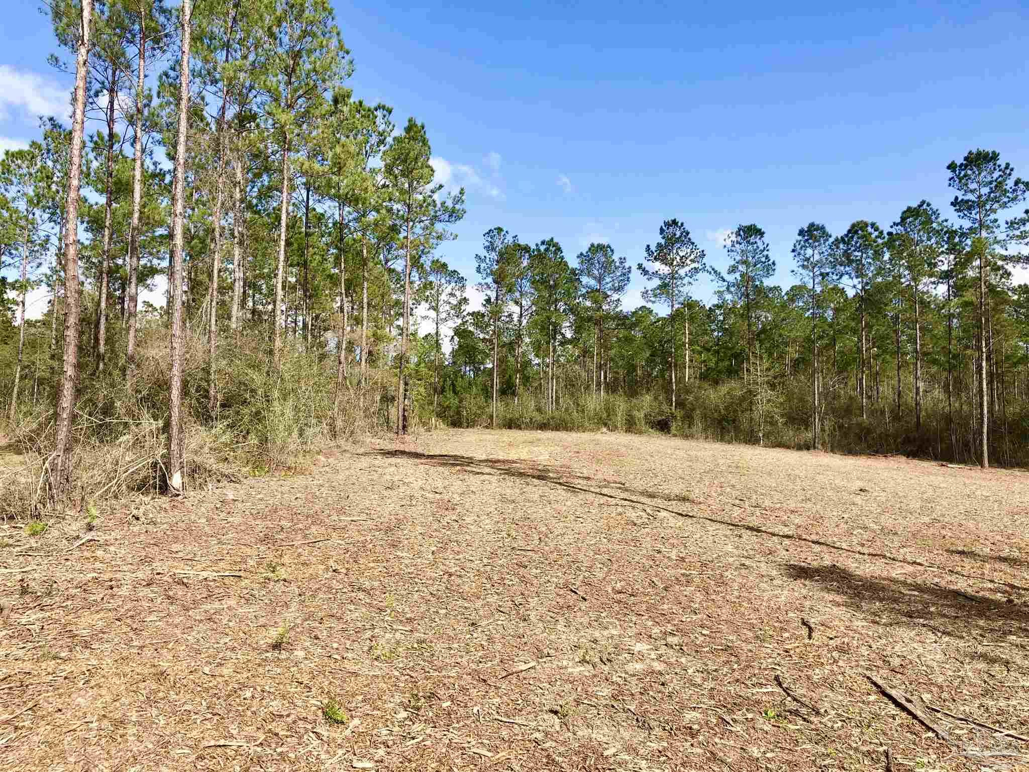 Lot 44 YELLOWSTONE DR, Pace, Florida 32571, ,Lots And Land,For Sale,Lot 44 YELLOWSTONE DR,587036