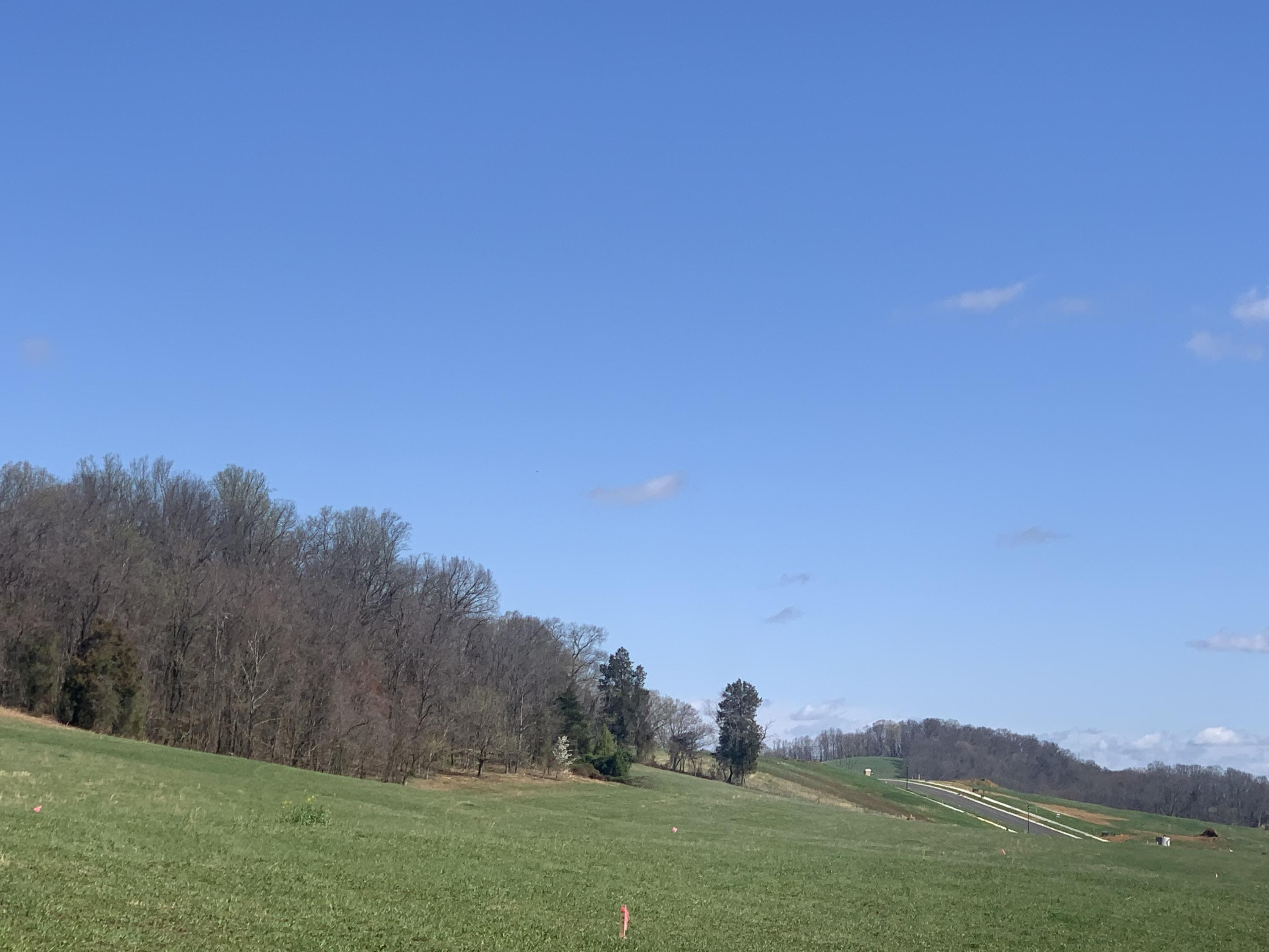 Tbd Cove Drive, Johnson City, Tennessee 37615, ,Lots And Land,For Sale,Tbd Cove Drive,9920261