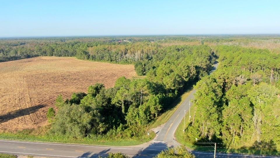 0 BERRY GROVES ROAD, CLERMONT, Florida 34714, ,Lots And Land,For Sale,0 BERRY GROVES ROAD,O5934976
