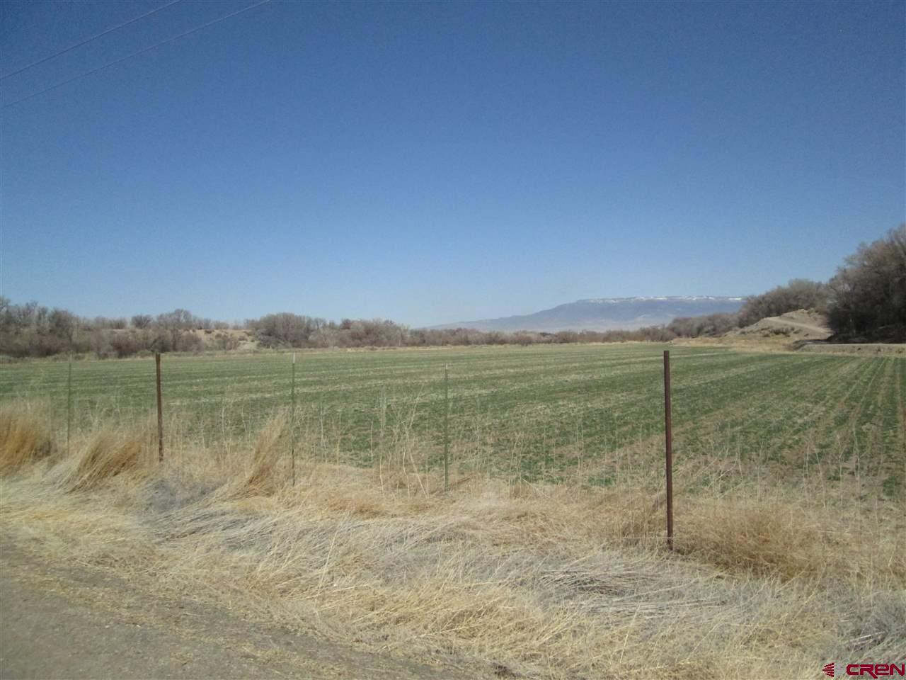 TBD Begonia Road, Olathe, Colorado 81416, ,Lots And Land,For Sale,TBD Begonia Road,780235
