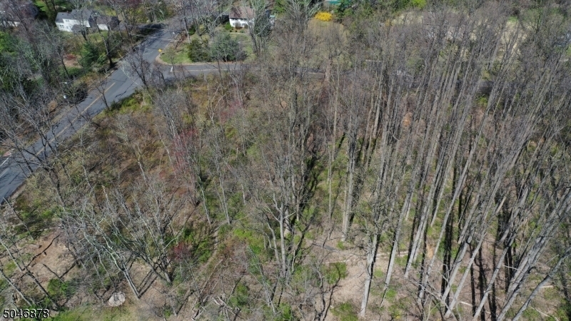 0 PLEASANT PLAINS ROAD, Long Hill Twp., New Jersey 07980, ,Other,For Sale,0 PLEASANT PLAINS ROAD,3701744
