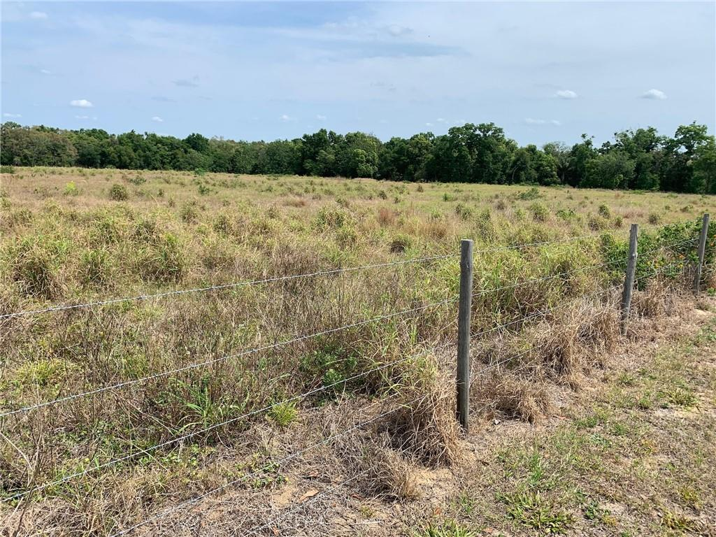 APOPKA, Florida 32703, ,Lots And Land,For Sale,O5774605