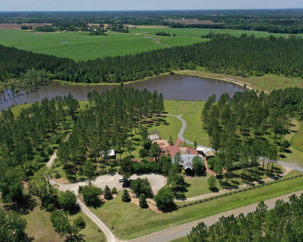 2818 Dry Lake Road, Dixie, Georgia 31629, ,Lots And Land,For Sale,2818 Dry Lake Road,12011