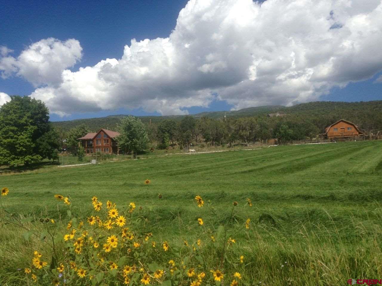 19795 High Park Road, Cedaredge, Colorado 81413, 4 Bedrooms Bedrooms, ,3 BathroomsBathrooms,Single Family,For Sale,19795 High Park Road,780562