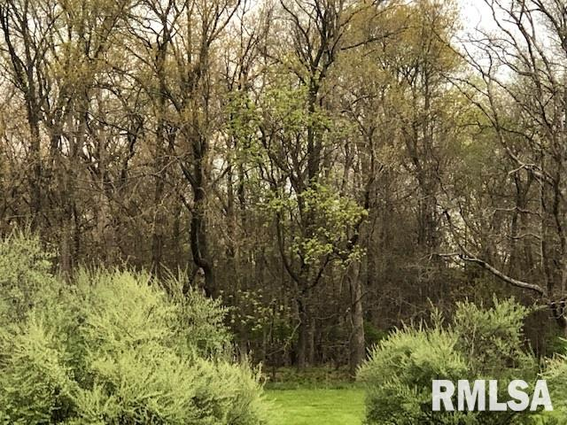 901 S 22ND, Herrin, Illinois 62948, ,Lots And Land,For Sale,901 S 22ND,EB438961