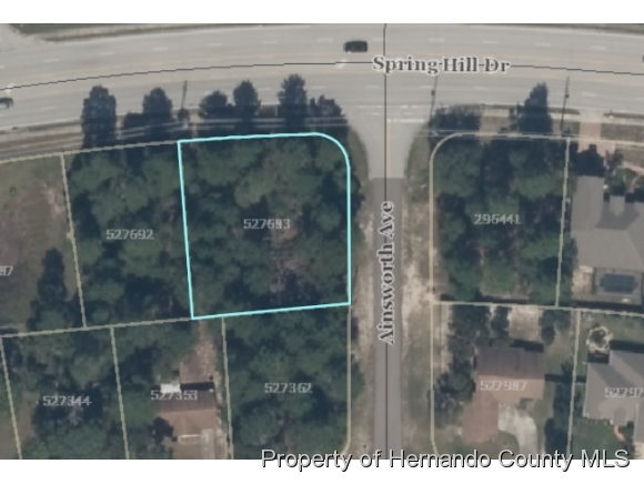 0000 Spring Hill Drive, SPRING HILL, Florida 34609, ,Lots And Land,For Sale,0000 Spring Hill Drive,2216172