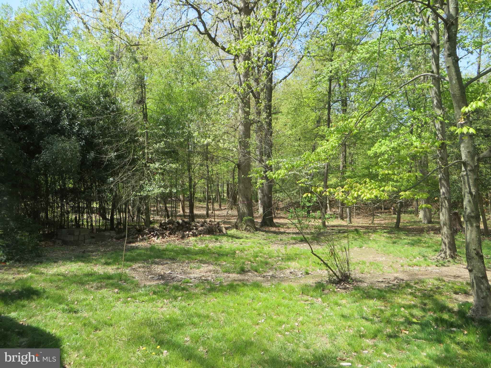 1254 CRESTHAVEN DR, SILVER SPRING, Maryland 20903, ,Lots And Land,For Sale,1254 CRESTHAVEN DR,MDMC754936