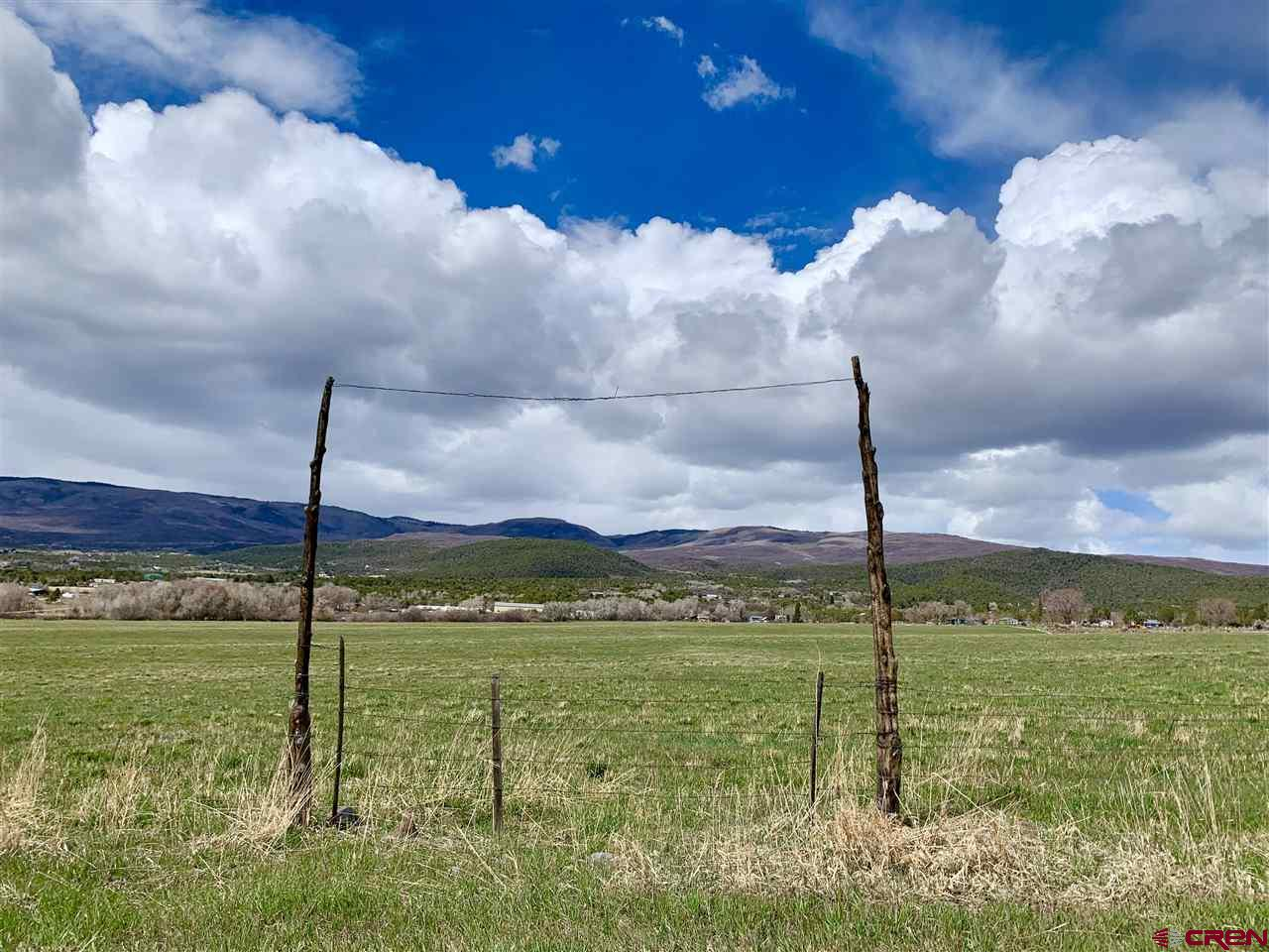 TBD Highway 65, Cedaredge, Colorado 81413, ,Farm And Agriculture,For Sale,TBD Highway 65,781335