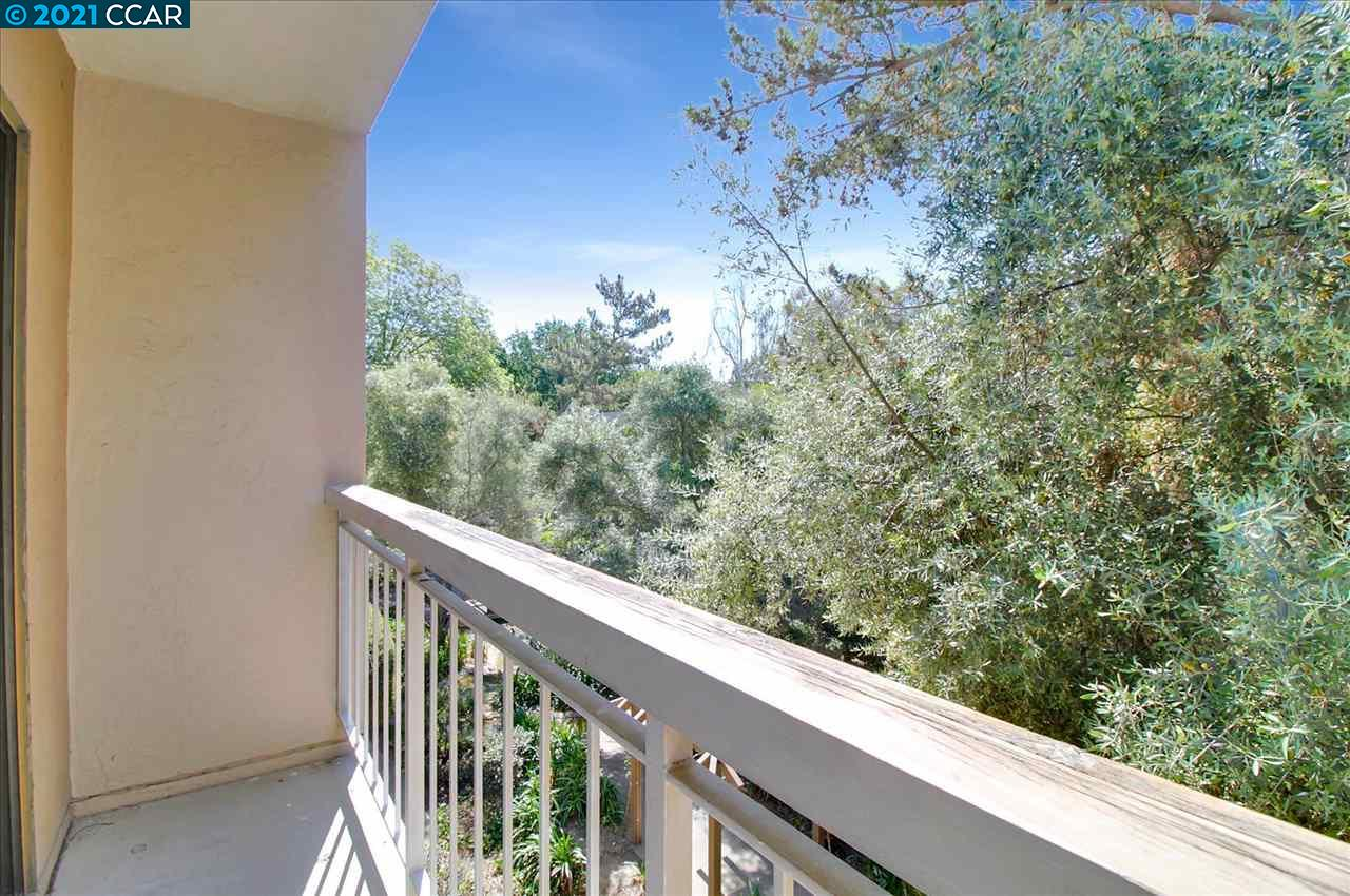 490 N Civic Dr, Walnut Creek, California 94596, 1 Bedroom Bedrooms, ,1 BathroomBathrooms,Condominium,For Sale,490 N Civic Dr,1,40948700