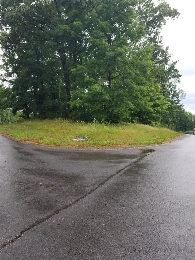 00 County Road 200, Athens, Tennessee 37303, ,Lots And Land,For Sale,00 County Road 200,20213201