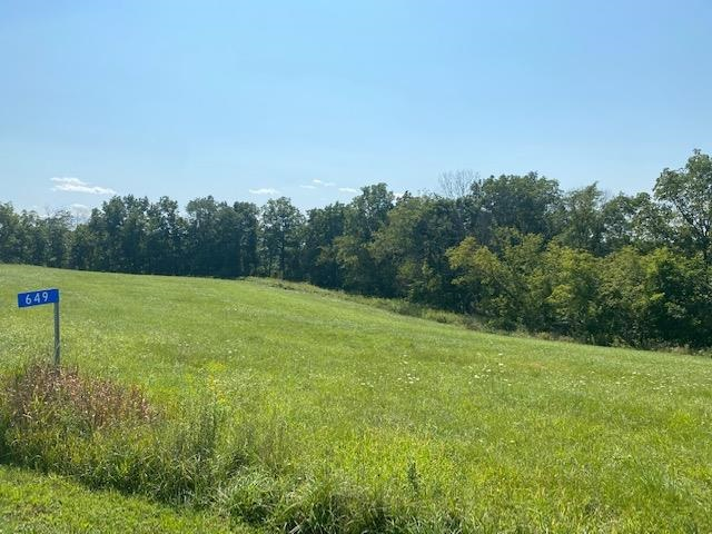 649 Two Rivers Lane, HARPERS FERRY, Iowa 52146, ,Lots And Land,For Sale,649 Two Rivers Lane,20214228