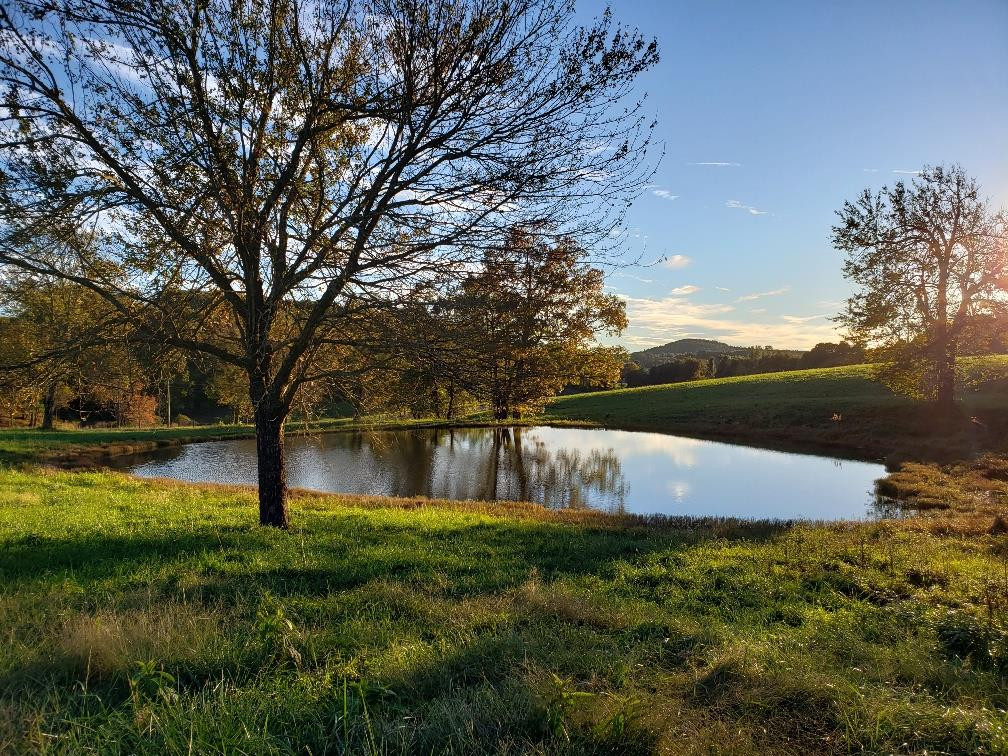 Tbd CRESTVIEW MOUNTAIN DR LOT 13, Ennice, North Carolina 28623, ,Lots And Land,For Sale,Tbd CRESTVIEW MOUNTAIN DR LOT 13,66312