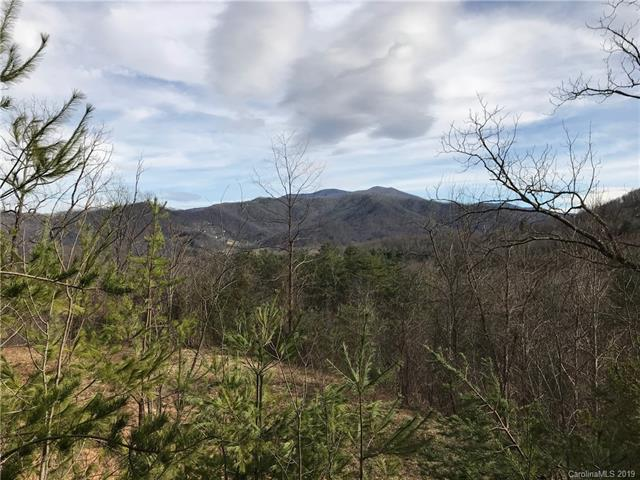0000 Spring Cove Road, Waynesville, North Carolina 28786, ,Lots And Land,For Sale,0000 Spring Cove Road,3477851