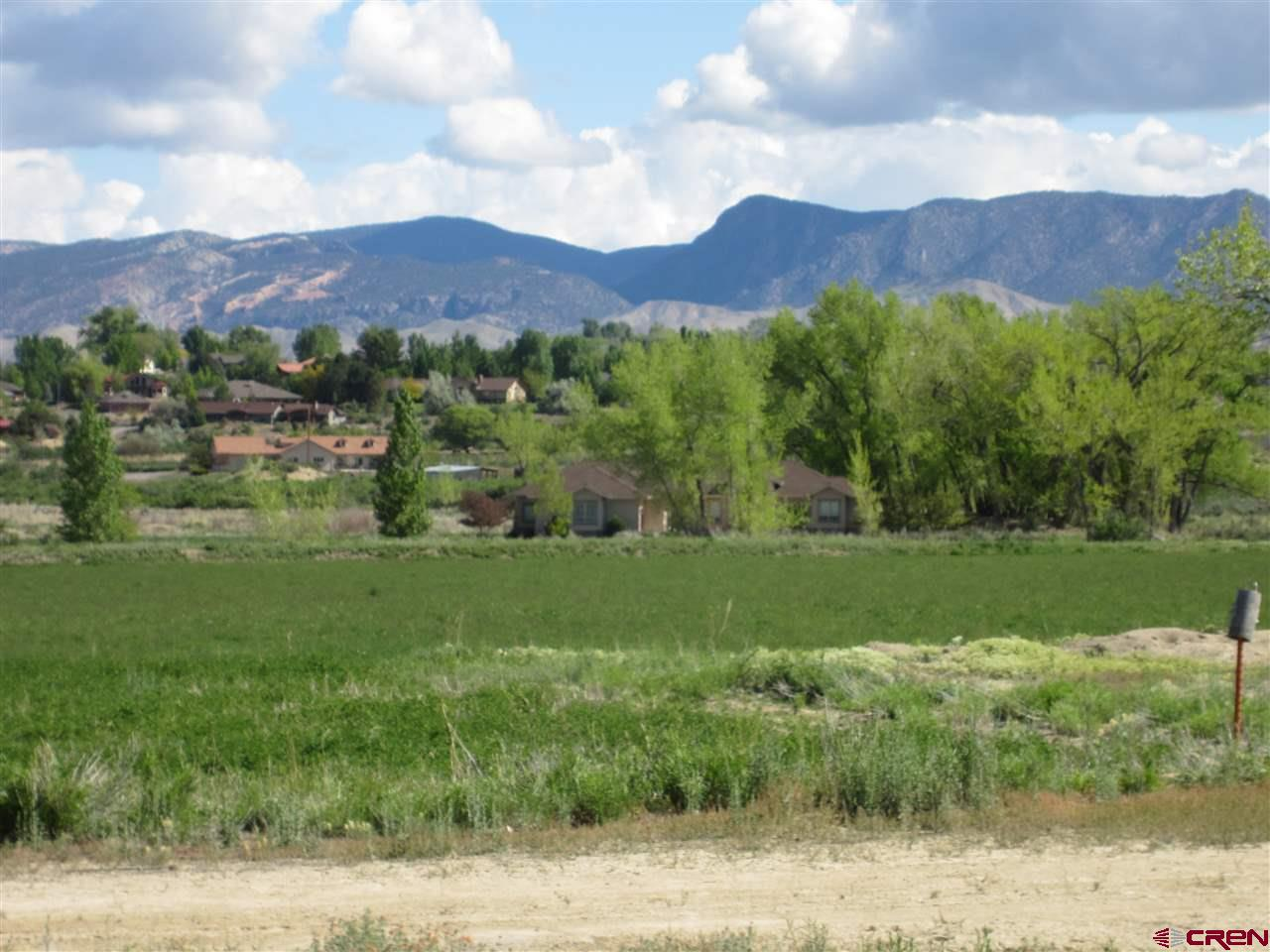 16666 6725, Montrose, Colorado 81401, ,Lots And Land,For Sale,16666 6725,719127