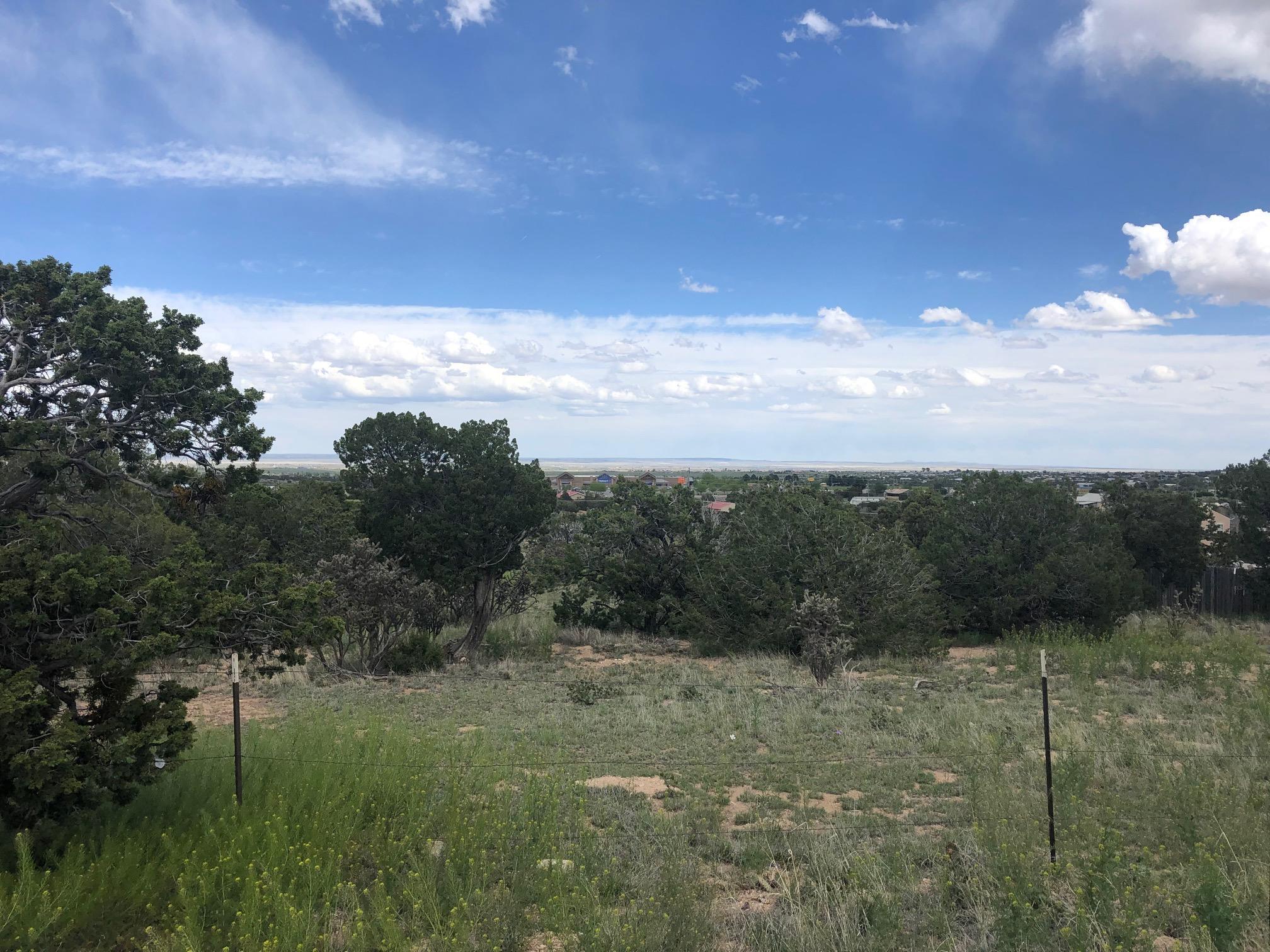 28 Ridgewood Road, Edgewood, New Mexico 87015, ,Lots And Land,For Sale,28 Ridgewood Road,943977