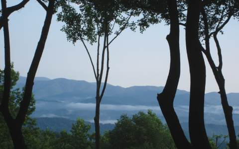 LT39 Painters Trace, Ellijay, Georgia 30536, ,Lots And Land,For Sale,LT39 Painters Trace,250767