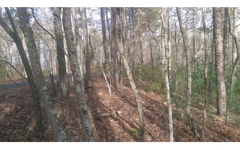 15 Greenfield, Ellijay, Georgia 30540, ,Lots And Land,For Sale,15 Greenfield,280948