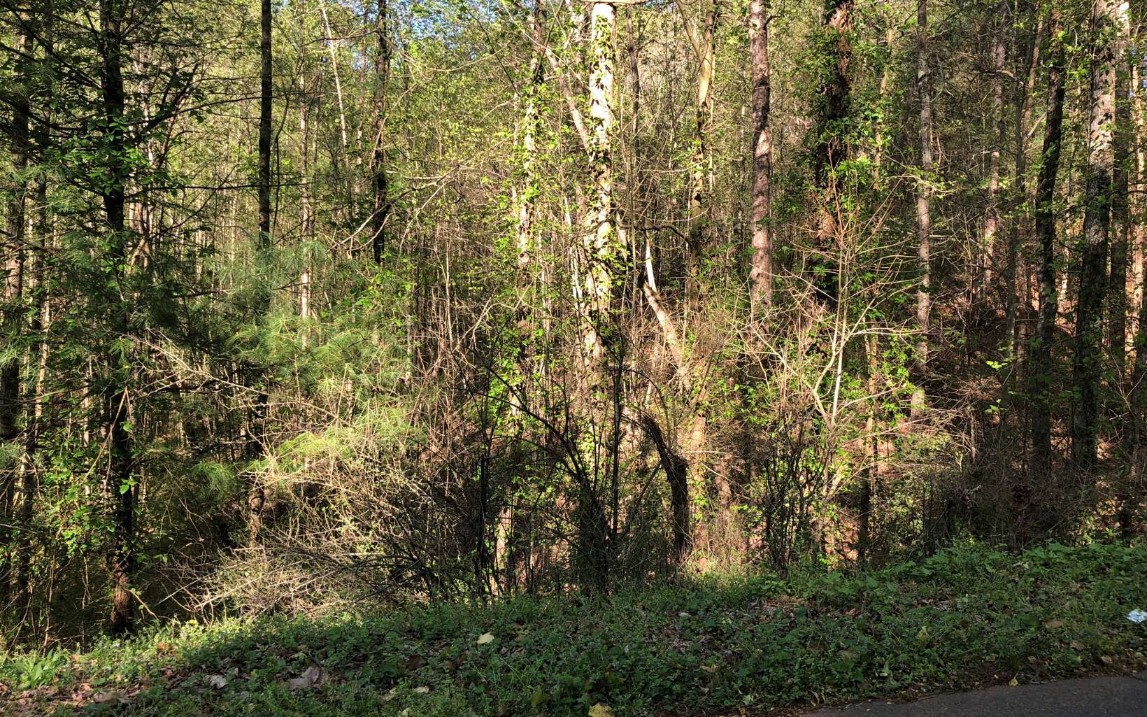 Hancock Drive, Ellijay, Georgia 30540, ,Lots And Land,For Sale,Hancock Drive,287315