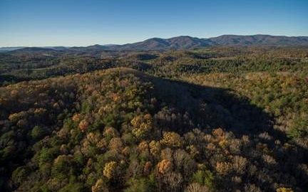 Tanager Trail, Ellijay, Georgia 30536, ,Lots And Land,For Sale,Tanager Trail,6549717