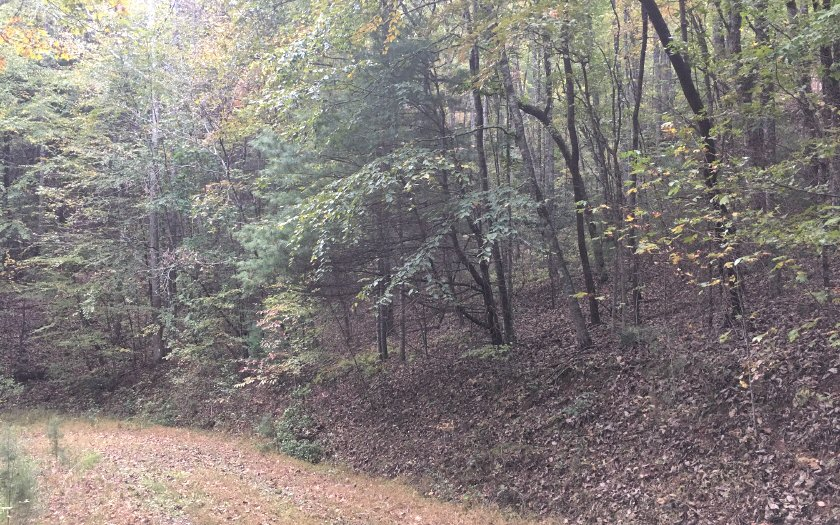 LT517 Chicasaw, Ellijay, Georgia 30540, ,Lots And Land,For Sale,LT517 Chicasaw,283021