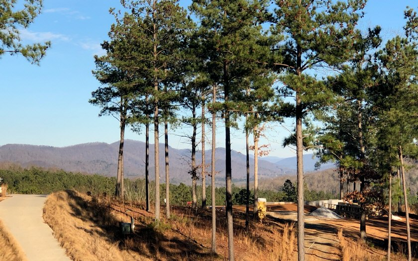 # 120 Thirteen Hundred, Blairsville, Georgia 30512, ,Lots And Land,For Sale,# 120 Thirteen Hundred,285890