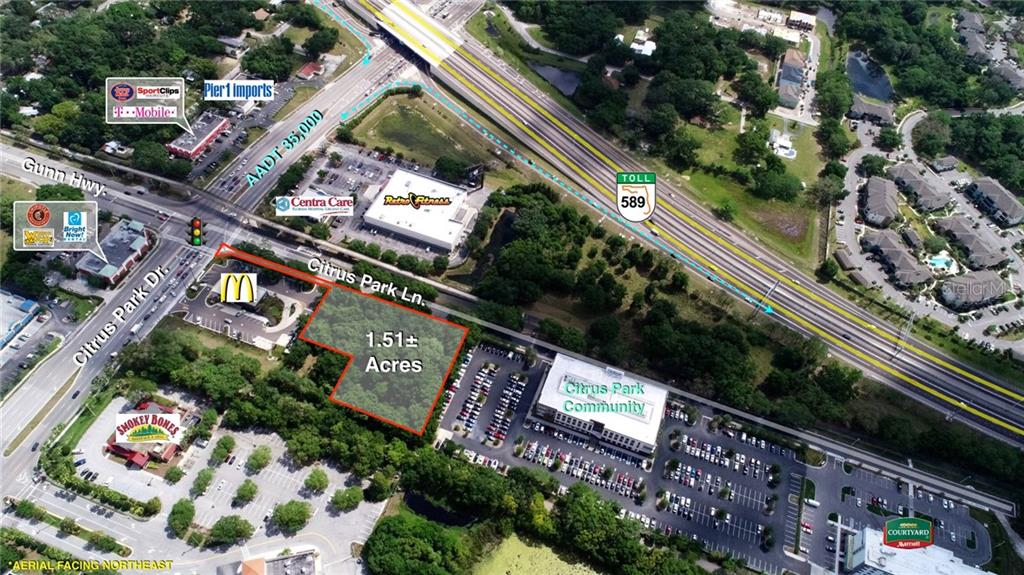 TAMPA, Florida 33625, ,Lots And Land,For Sale,U8042462
