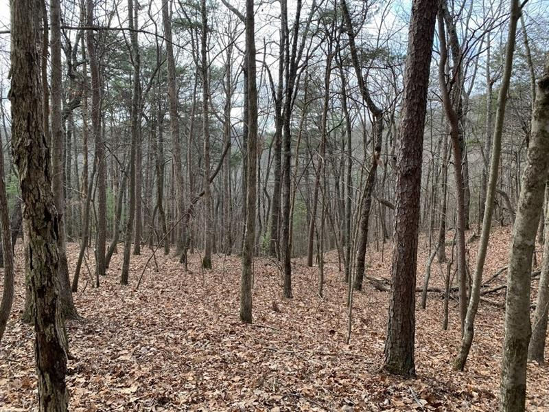 Paramount Trail, Ellijay, Georgia 30536, ,Lots And Land,For Sale,Paramount Trail,8714776