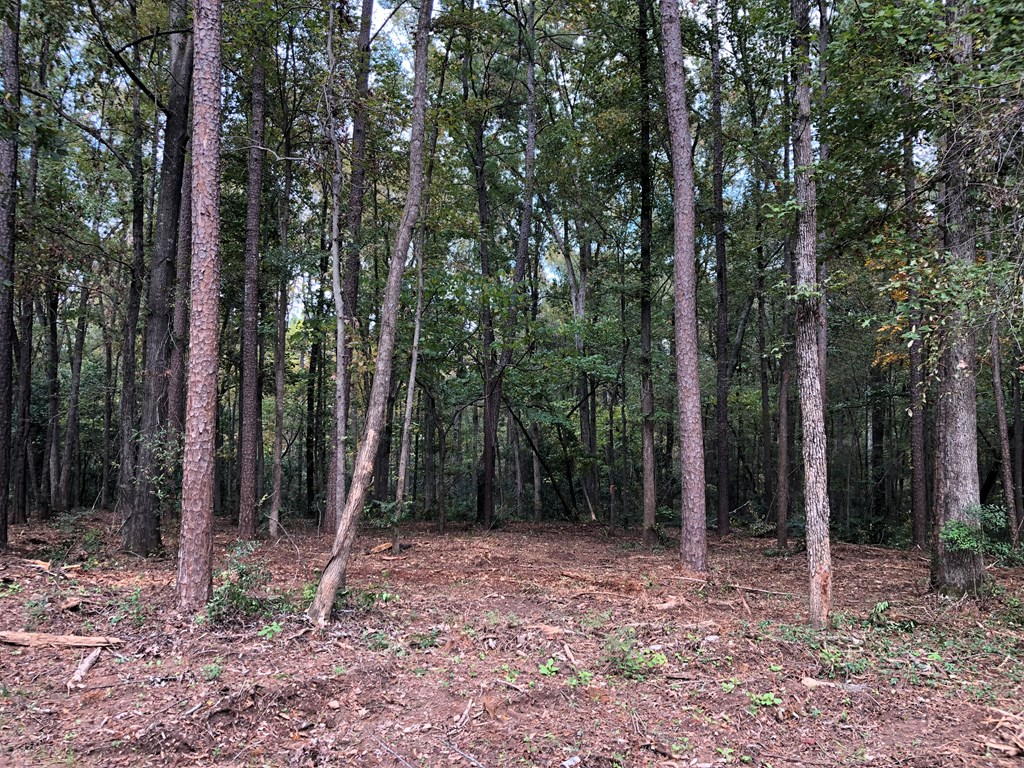 4575 Gray Lane, Evans, Georgia 30809, ,Lots And Land,For Sale,4575 Gray Lane,434507