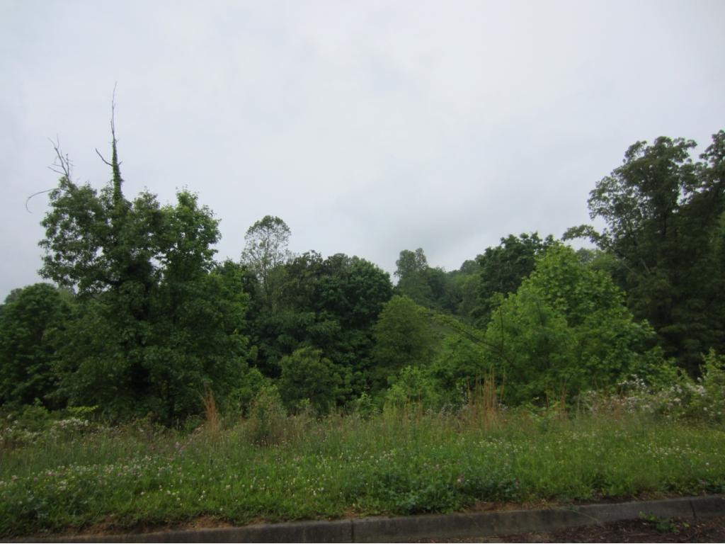 413 Grace Hills Drive, Blountville, Tennessee 37617, ,Lots And Land,For Sale,413 Grace Hills Drive,377370